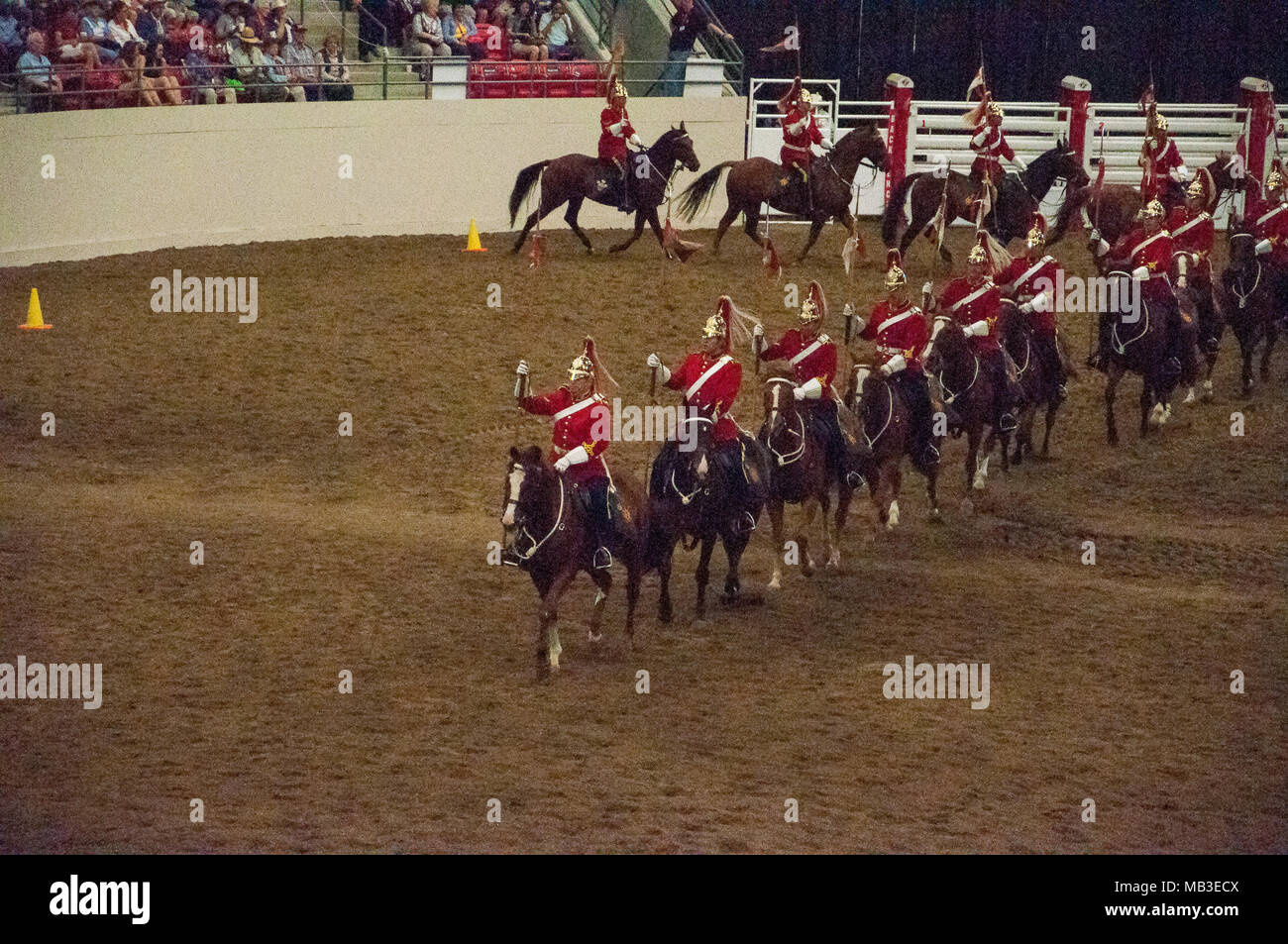 The Lord Strathcona's Horse (Royal Canadians) Mounted Troop Musical Ride at the Calgary Stampede. Established in 1900, the unit has battle honours Sou - Stock Image