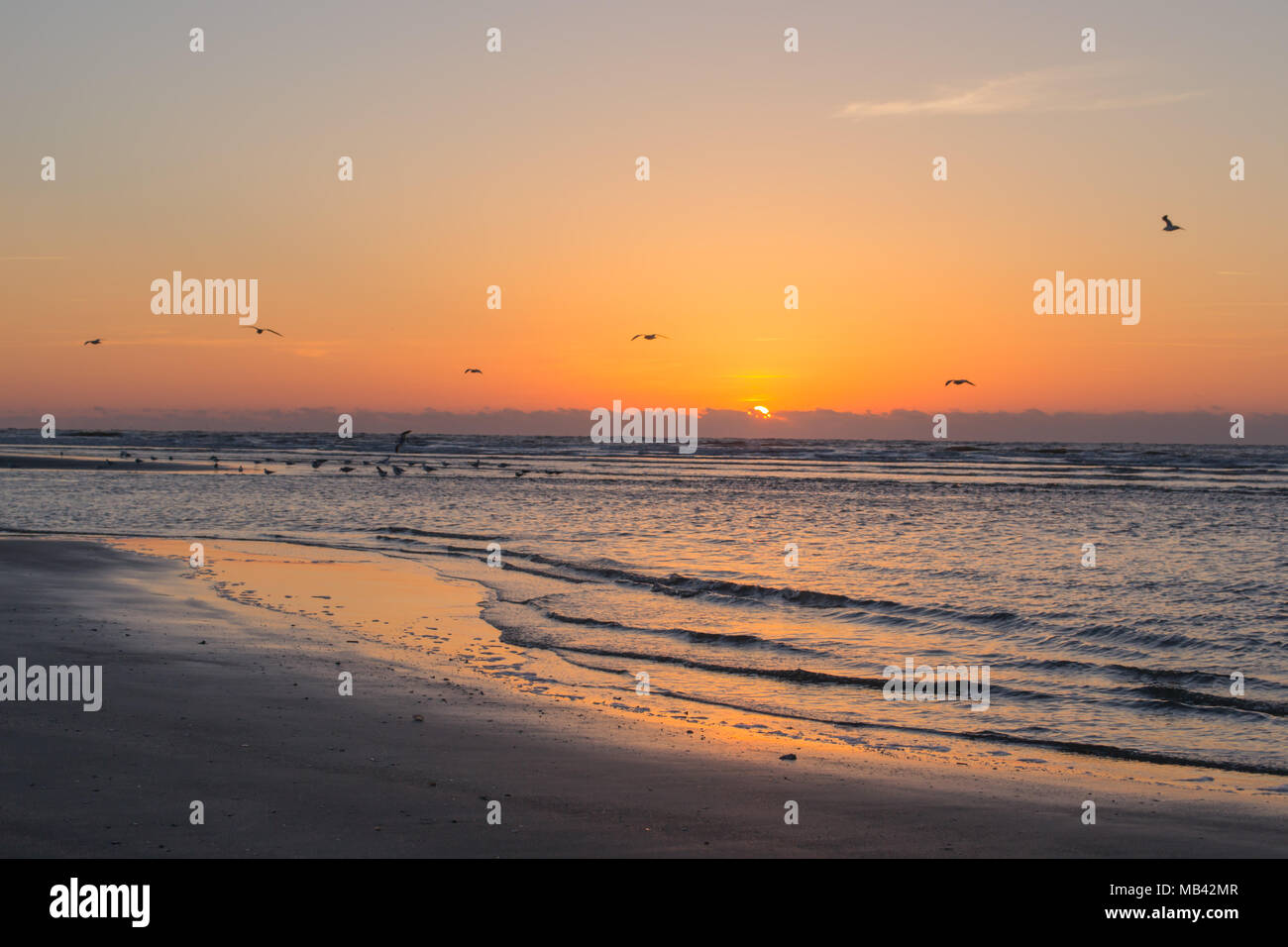 Greet The Morning Or End Your Day Along The Beach As The Sun Dips