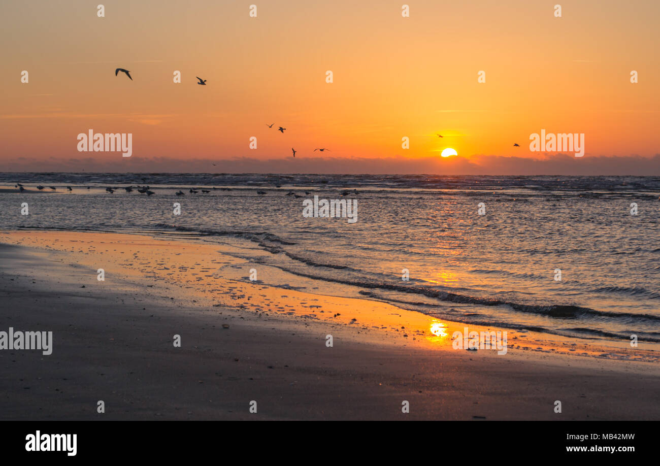 Greet the morning or end your day along the beach as the sun dips greet the morning or end your day along the beach as the sun dips along the horizon this location is the isle of palms just outside of charleston sc m4hsunfo