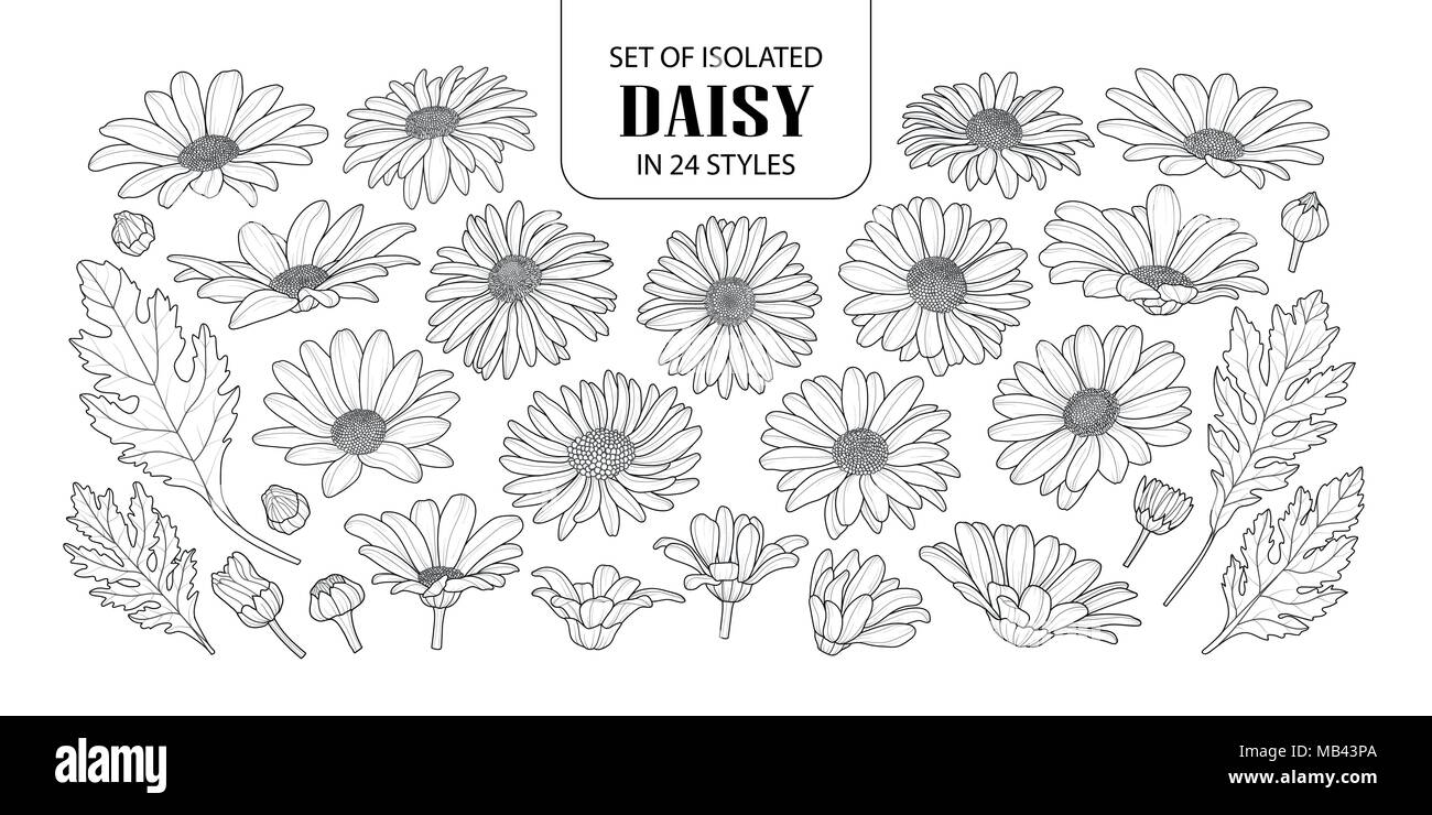 Set Of Isolated Daisy In 24 Styles Cute Hand Drawn Flower Vector