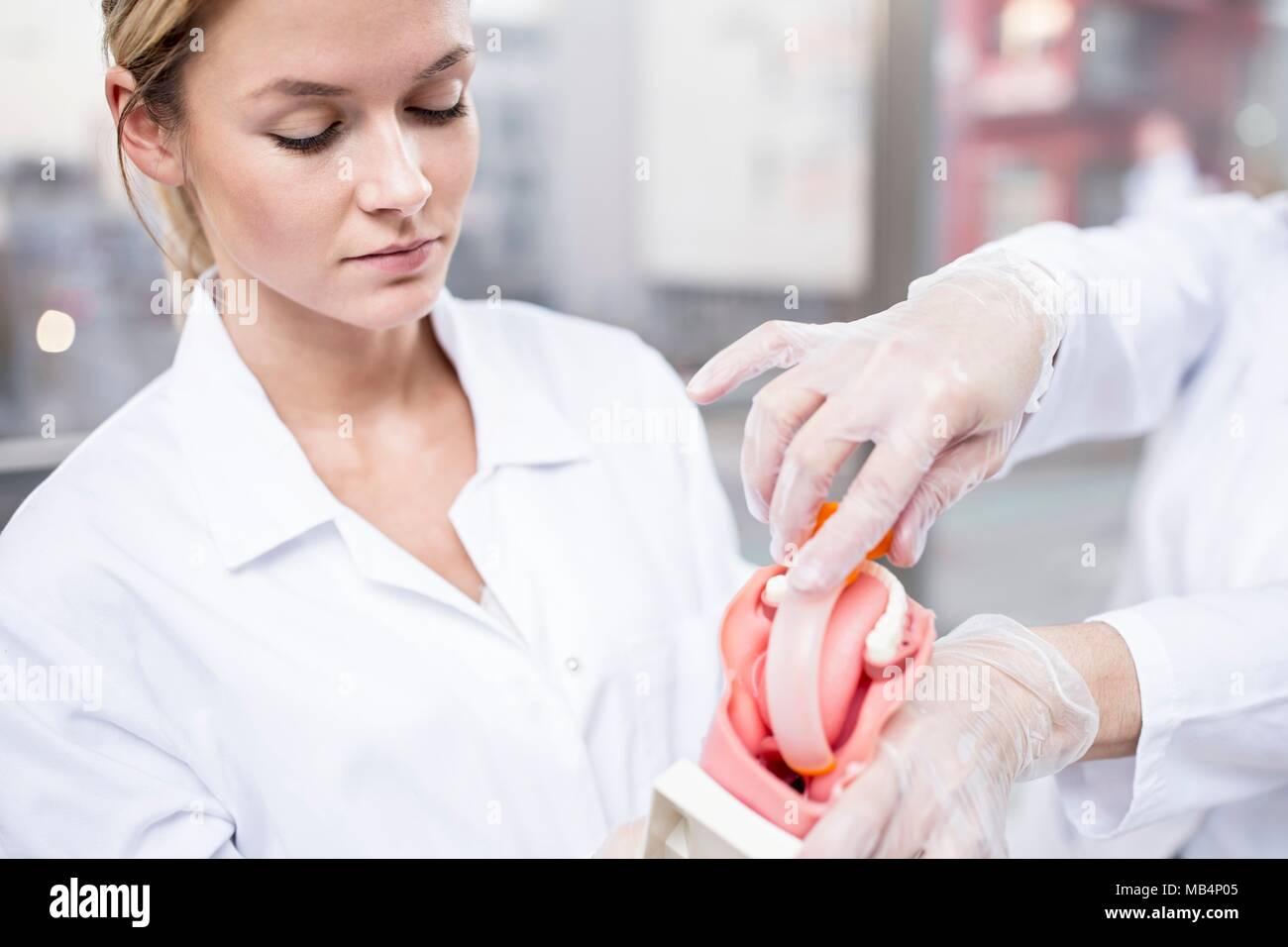 Teacher demonstrating tracheal intubation using a demonstration model. - Stock Image