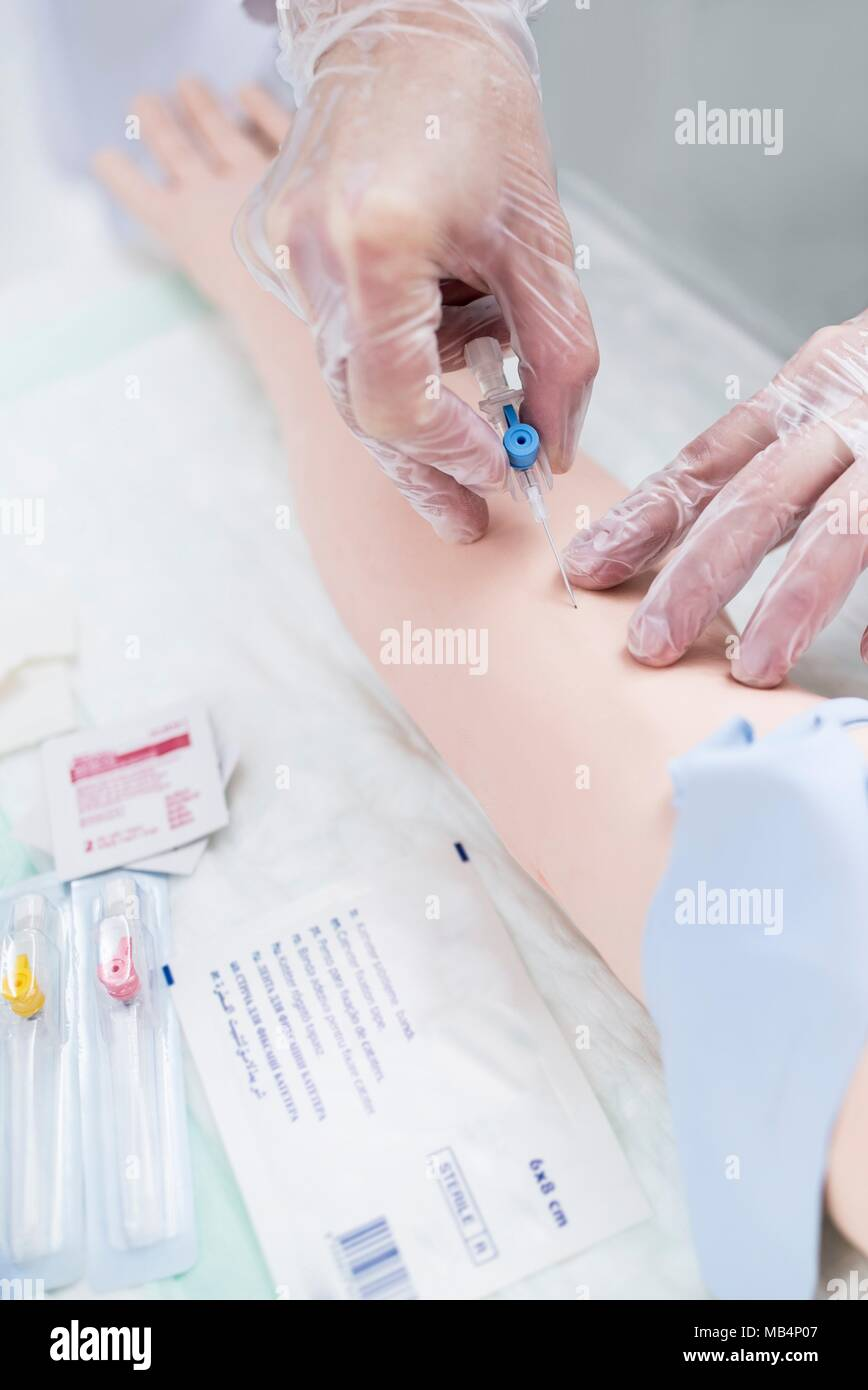 Doctor practising inserting an IV (intravenous) line on a training dummy. - Stock Image