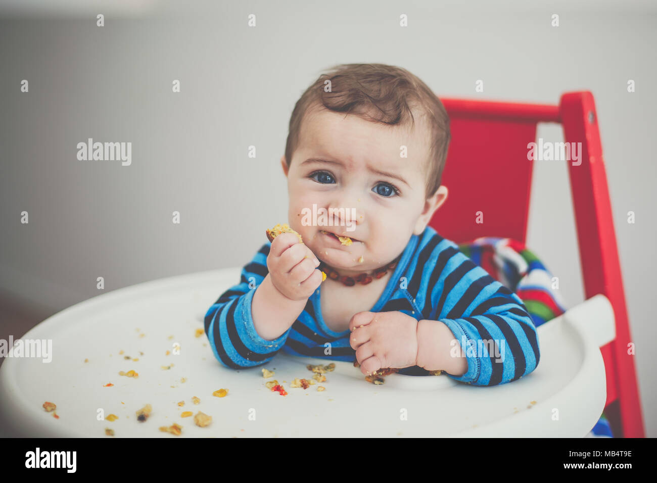 6 month old baby boy feeding himself in a high chair - Stock Image