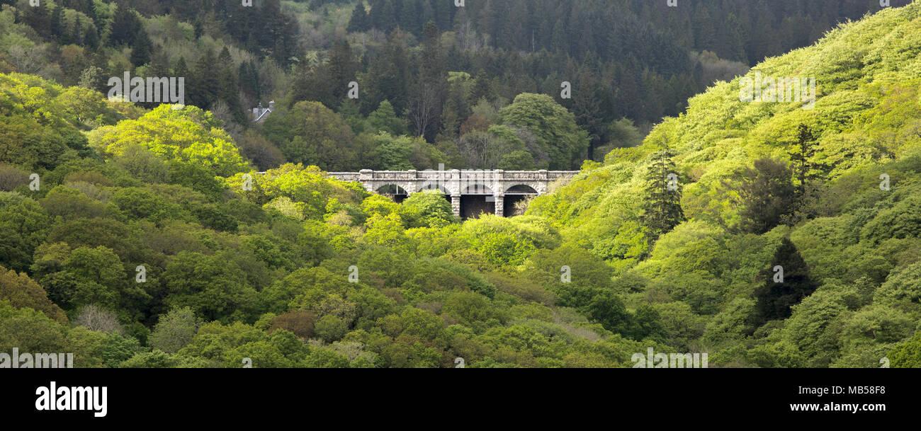 Burrator reservoir nestled among woodland in spring Dartmoor National Park Devon Uk - Stock Image