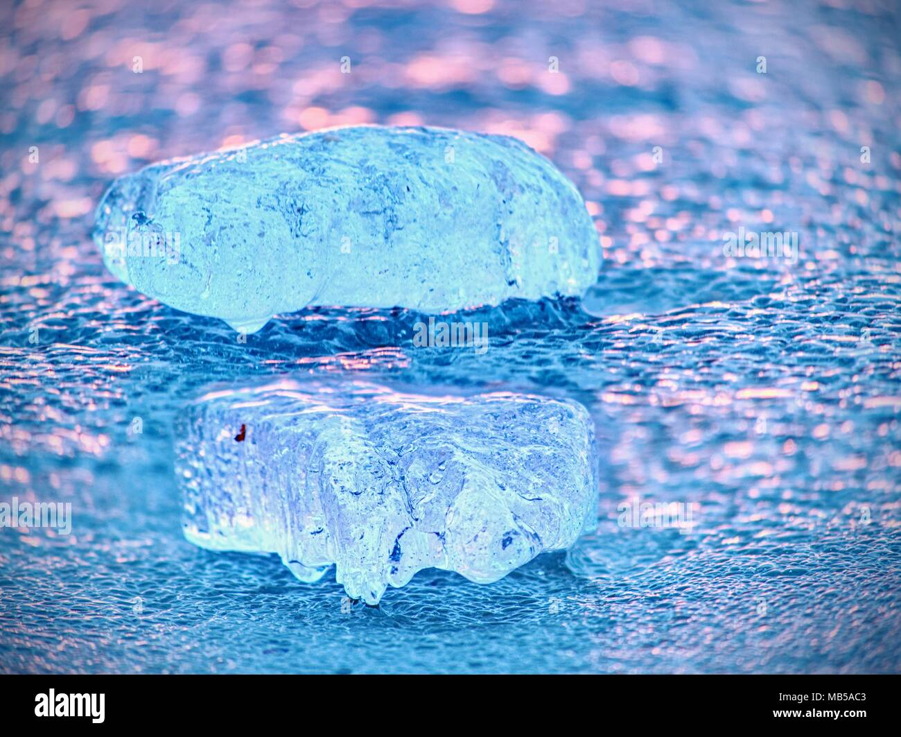 Shiny cold ice pieces on clear ice floe. Structure of natural ice in selective focus photograph.  Vivid colors of polar sunset. Stock Photo