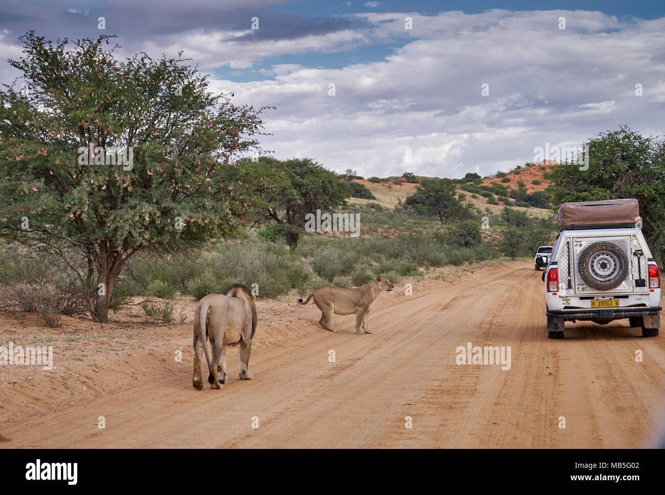 Self Driving Car Stock Photos & Self Driving Car Stock Images - Alamy
