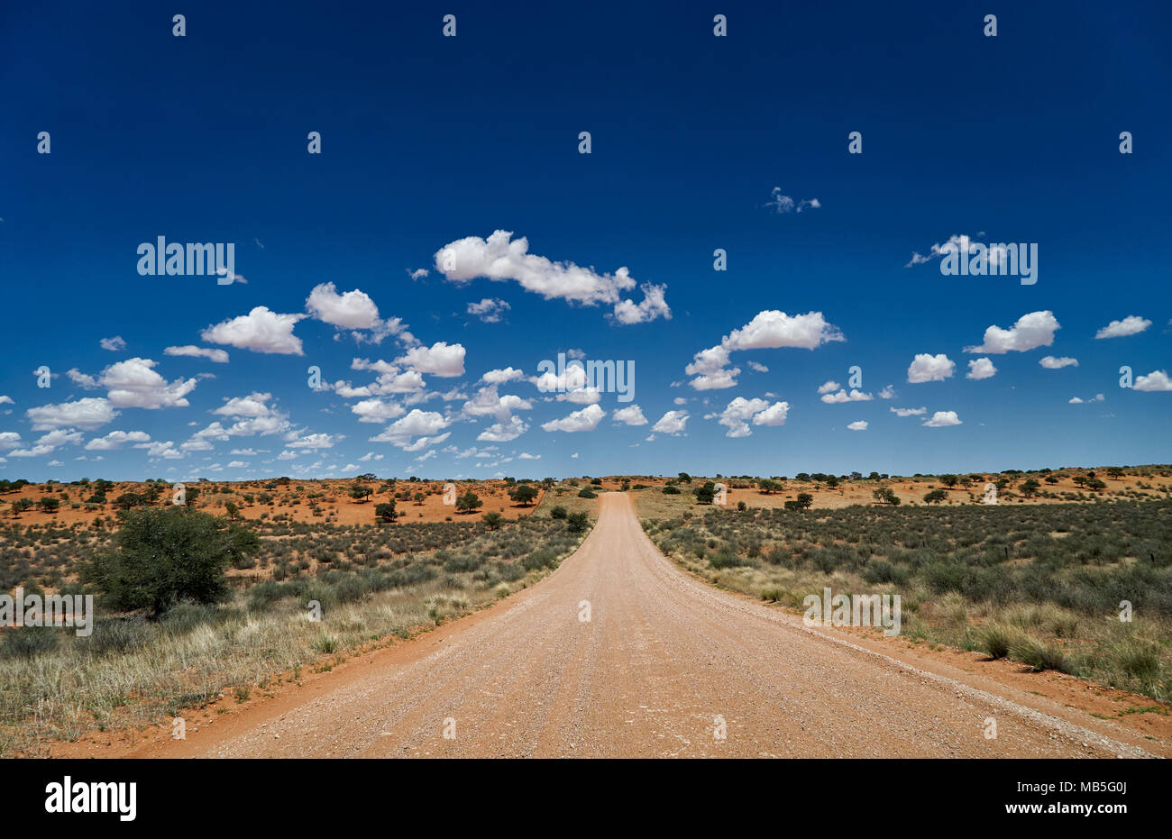 straight gravel road through dunes of Kalahari, Namibia, Africa - Stock Image