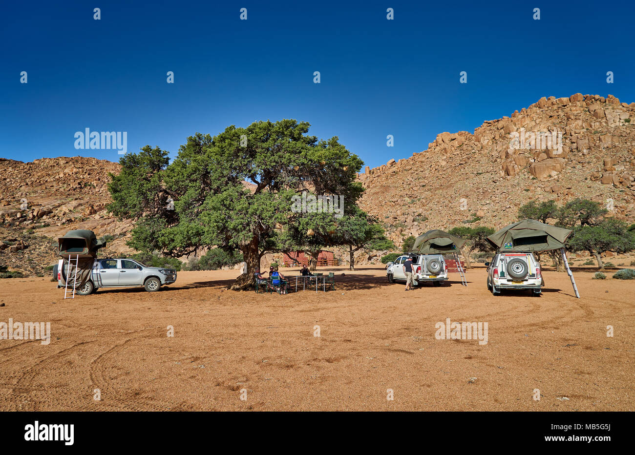 three cars of self-drive tourists camping under a tree in tranquil landscape on Farm Namtib, Namibia, Africa - Stock Image