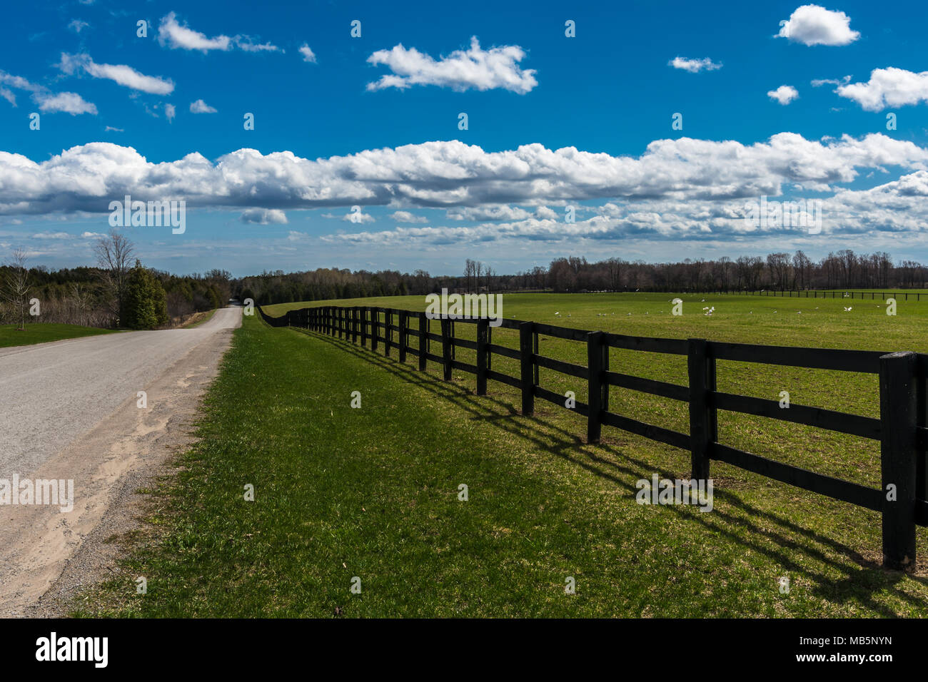 Countryside road showing green pasture and wooden farm fence - Stock Image