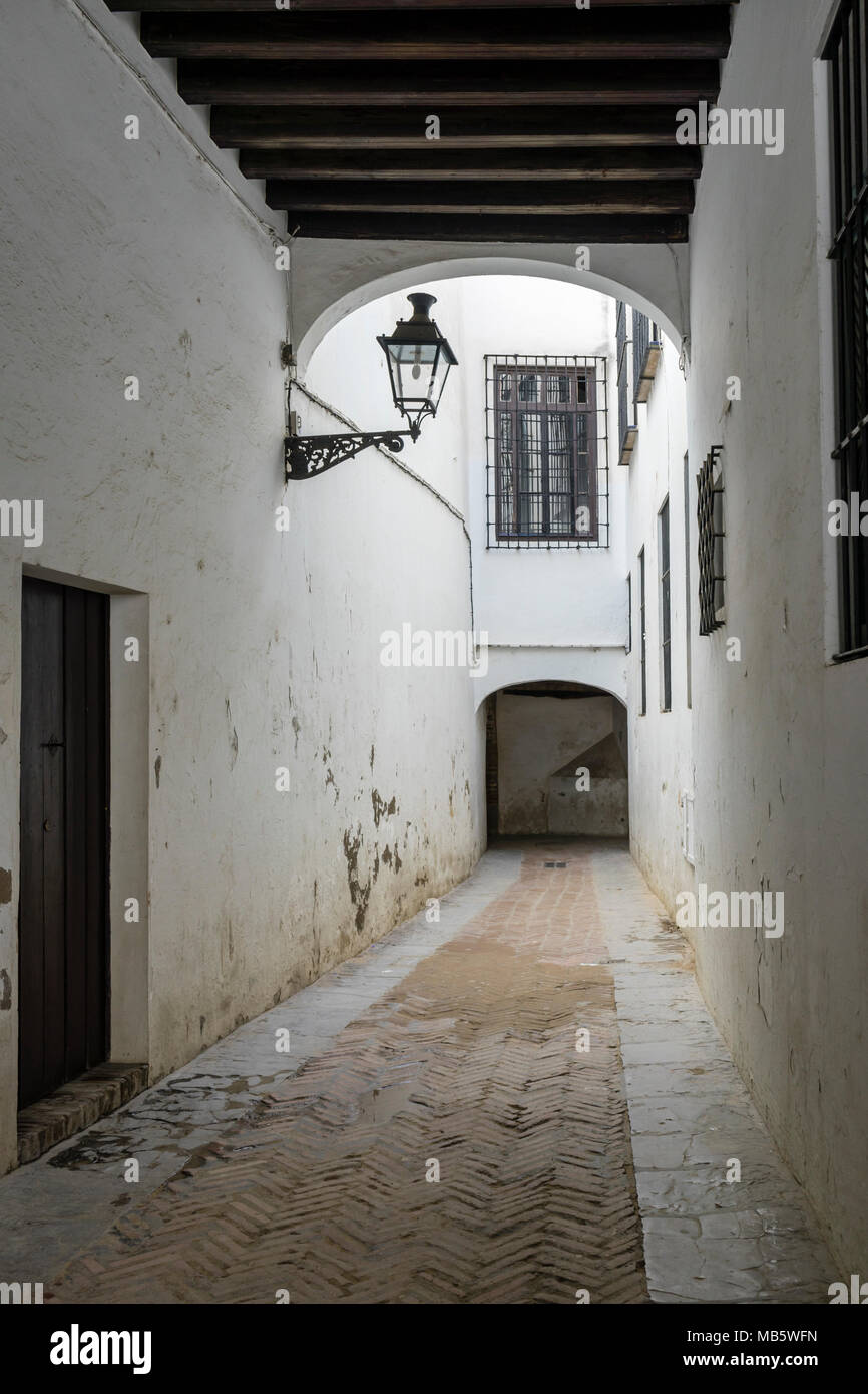Street in the Jewish quarter (Juderia) in the Santa Cruz district in the Spanish city of Seville, Andalusia, Spain Stock Photo