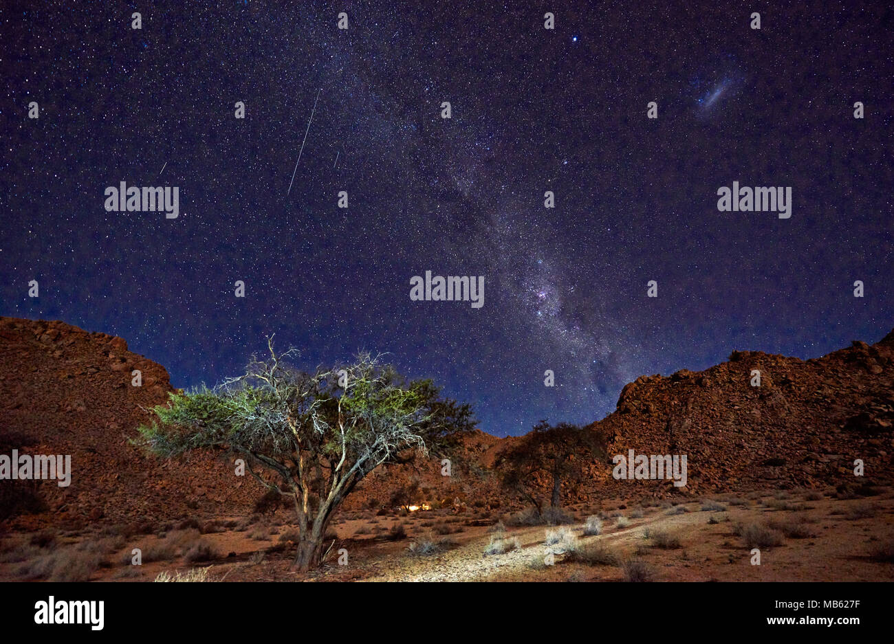 night shot of a tree with moonlight under sky with stars in tranquil landscape on Farm Klein-Aus, Geisterschlucht, Namibia, Africa - Stock Image