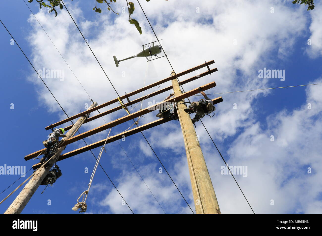 U.S. Army Corps of Engineers Task Force Power Restoration contractors complete work on a transmission line in the Guanica State Forest, Puerto Rico, April 6. The line connects the Costa Sur Power Plant in Ponce to Mayaguez. Mayaguez is the eighth-largest municipality in Puerto Rico. The repairs stabilized the system for the region. - Stock Image
