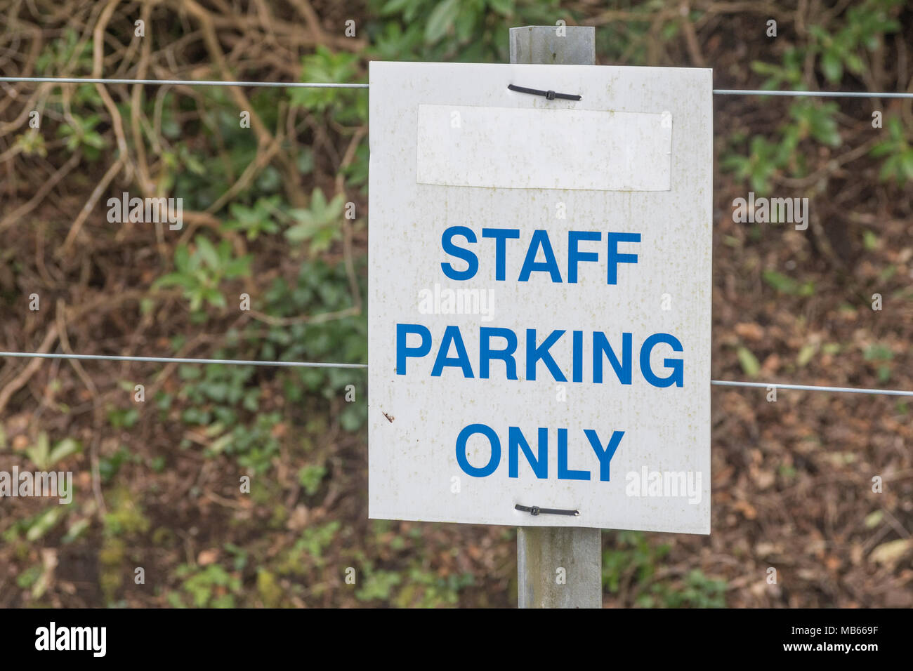 Staff Parking Only sign - metaphor / allegory for 'chosen few', 'special cases', elitism, favouritism, preferential treatment. - Stock Image