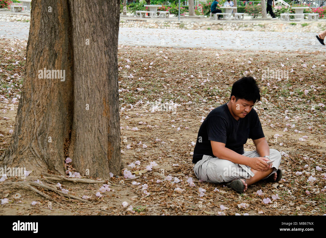 Man Reading Book Under Tree Stock Photos & Man Reading Book Under ...