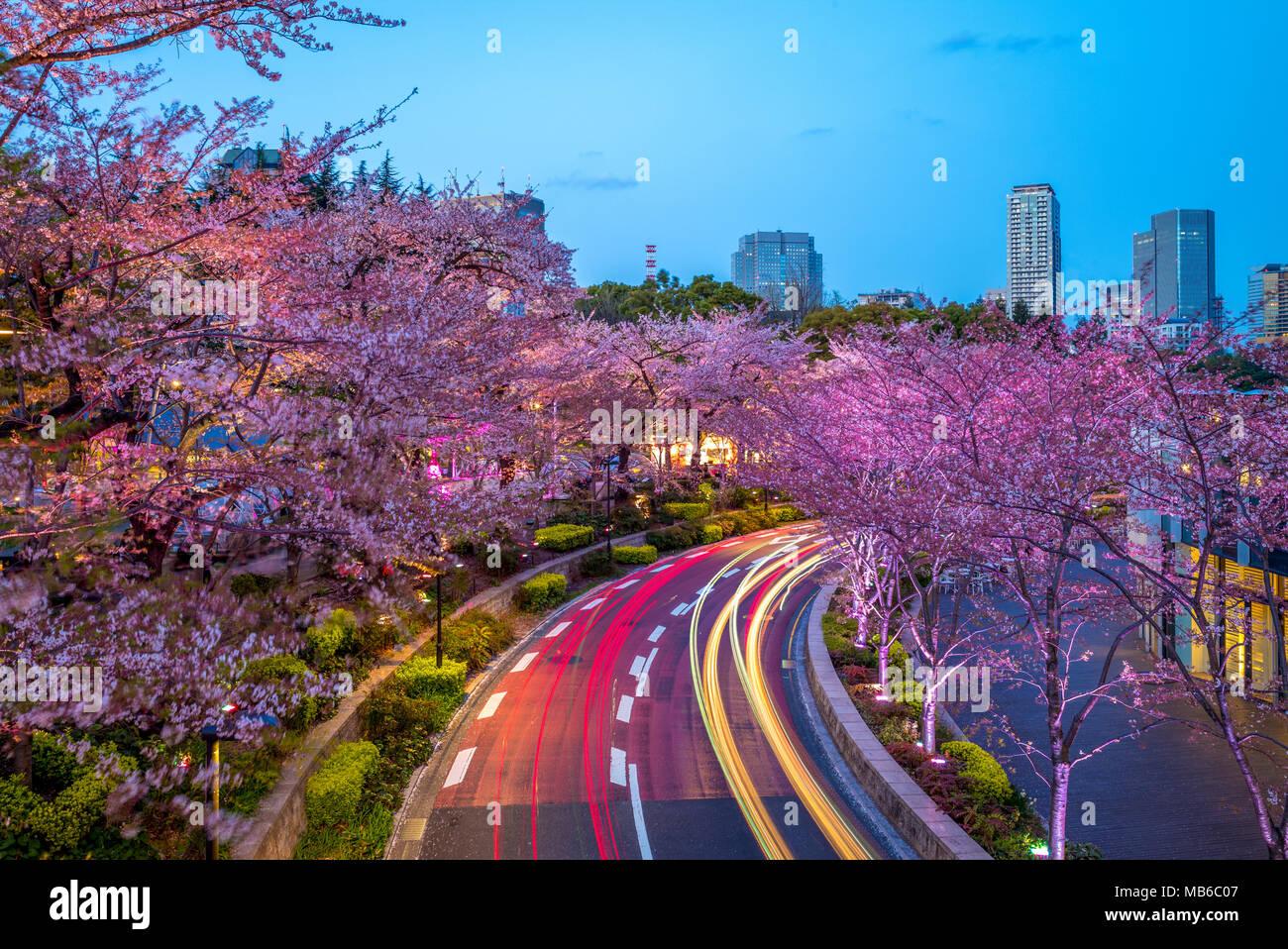 night view of tokyo midtown in roppongi,  japan - Stock Image