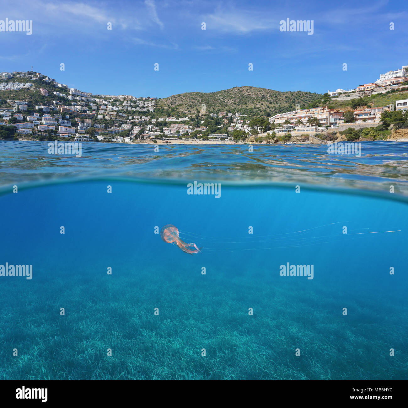 Spain coastline with buildings on Costa Brava and neptune grass  with a jellyfish underwater, split view above and below surface, Mediterranean sea - Stock Image