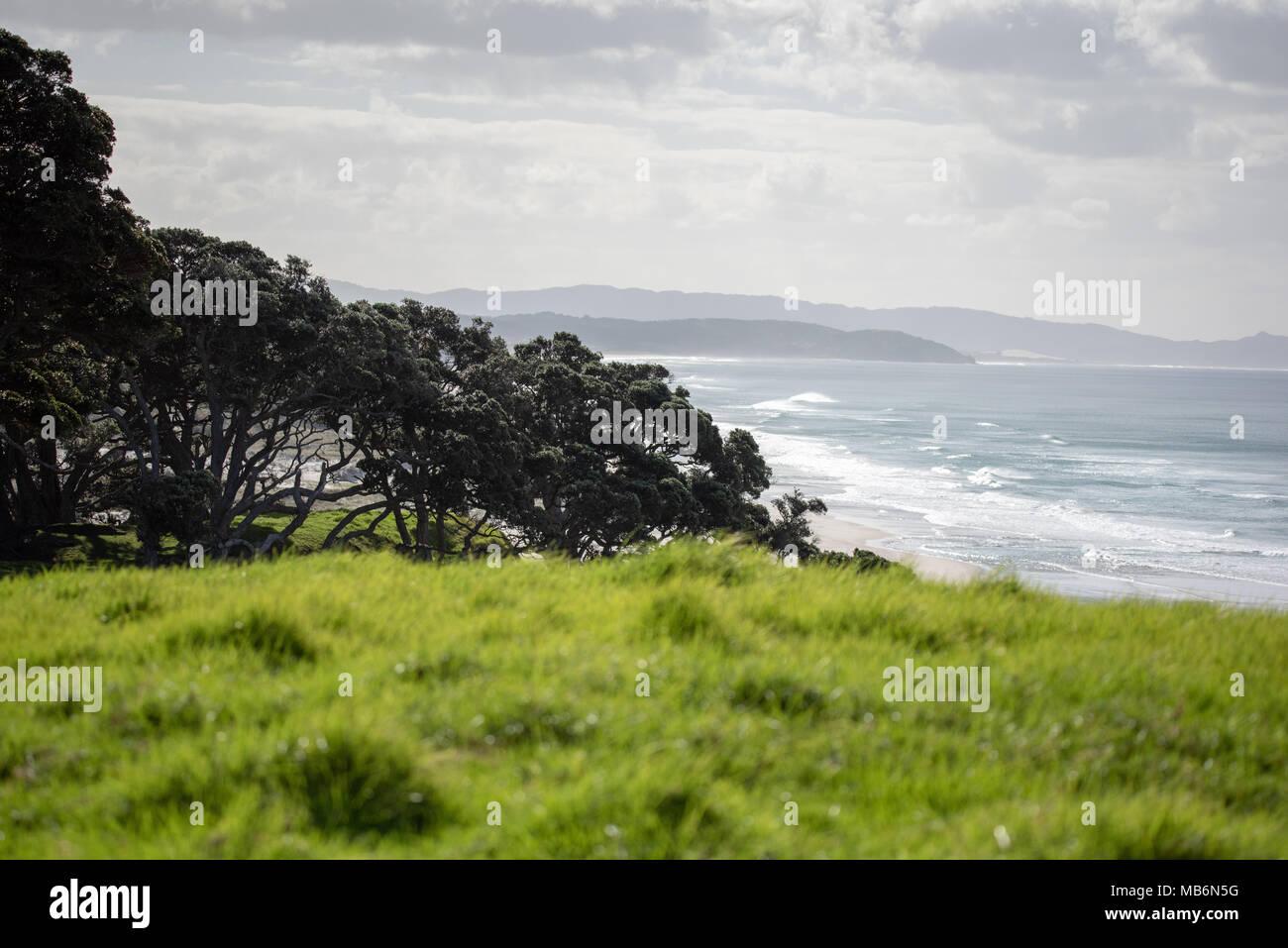 Pakiri beach, New Zealand, top view Stock Photo