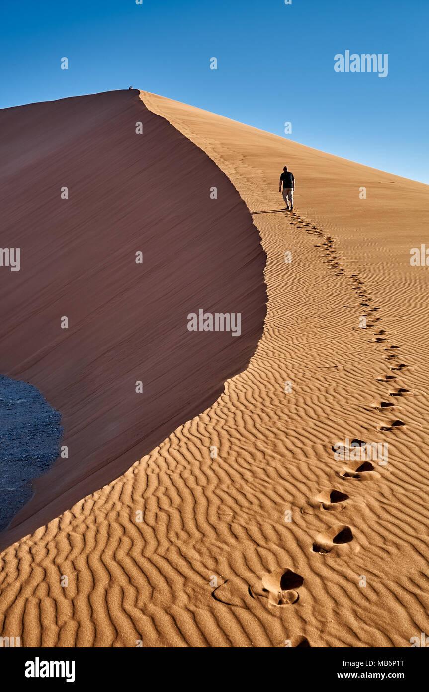 man ist walking up dune 45, desert landscape of Namib - Stock Image