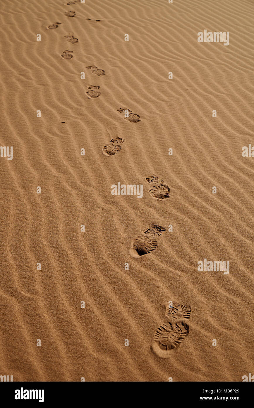 footprints in sand of Namib - Stock Image