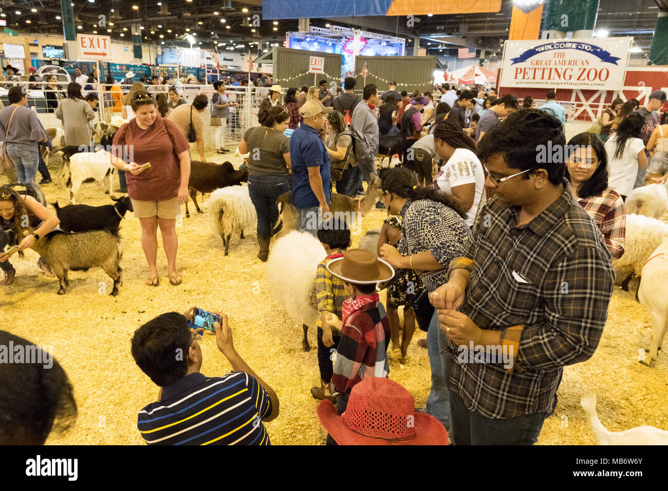 Parents, young children and animals in the Petting Zoo, Houston Livestock Show and Rodeo, Houston, Texas USA - Stock Image