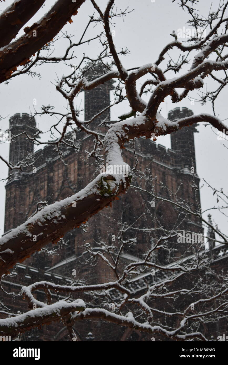 Chester's Anglican cathedral battling the elements on a snowy winters morning - Stock Image