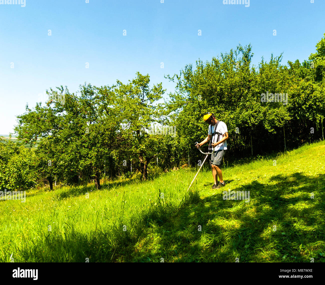 Man mowing green wild grass field using brush cutter mower or power tool string lawn trimmer. Seasonal garden cleaning and mowing concept. Copy space. - Stock Image