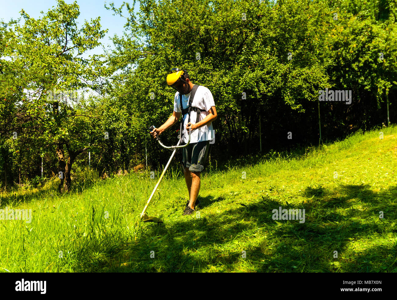 Close up of man mowing green wild grass field using brush cutter mower or power tool string lawn trimmer. Seasonal garden cleaning and mowing concept. - Stock Image