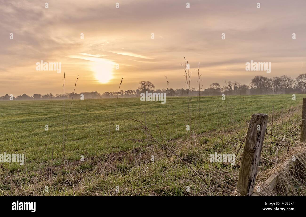 Dawn falls on a newly planted field.  The sun is prominent in the dramatic sky and wooden fence posts are in the foreground. - Stock Image