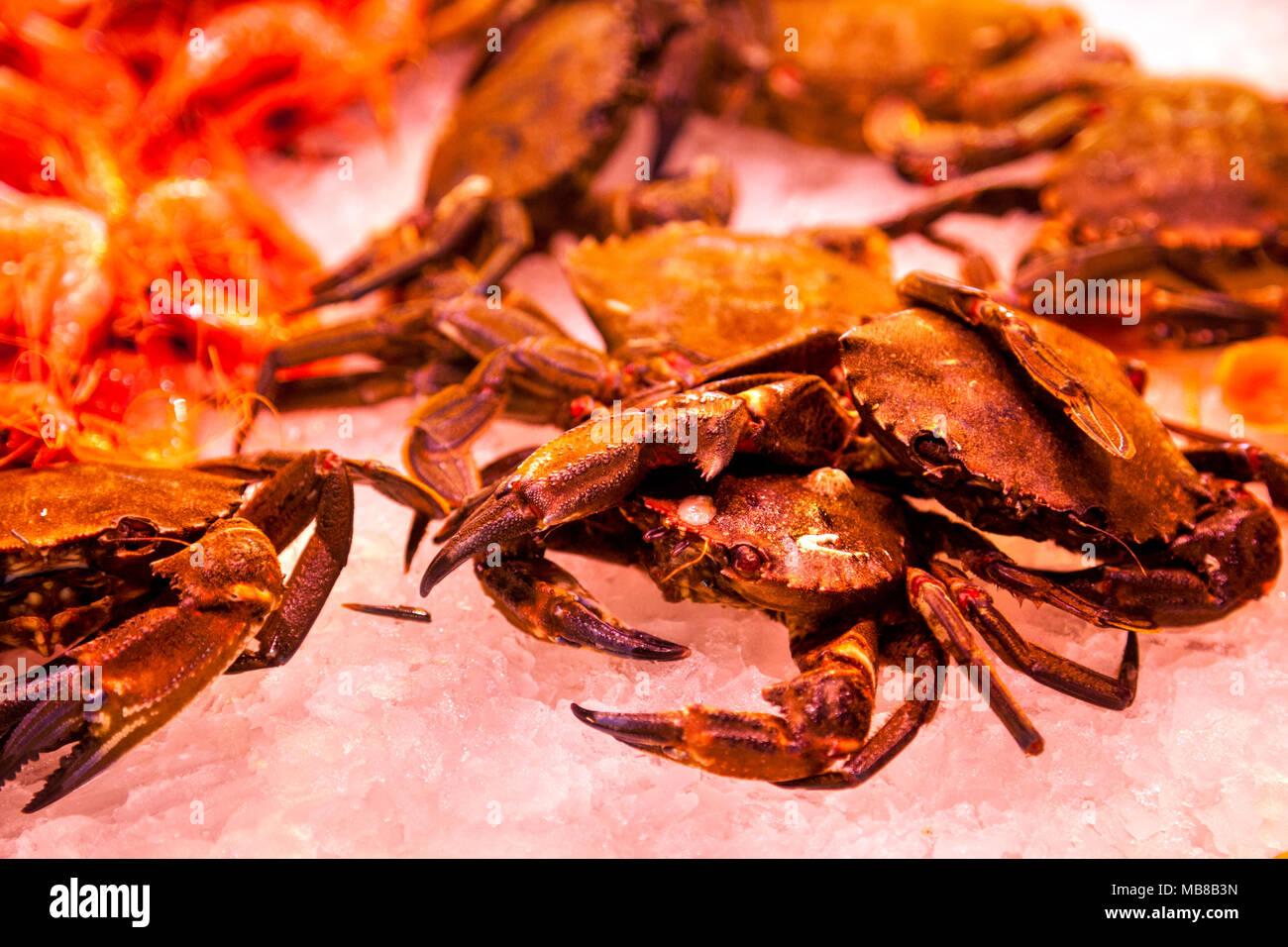 Fresh crab on ice at a market (La Boqueria Market in Barcelona, Spain) - Stock Image