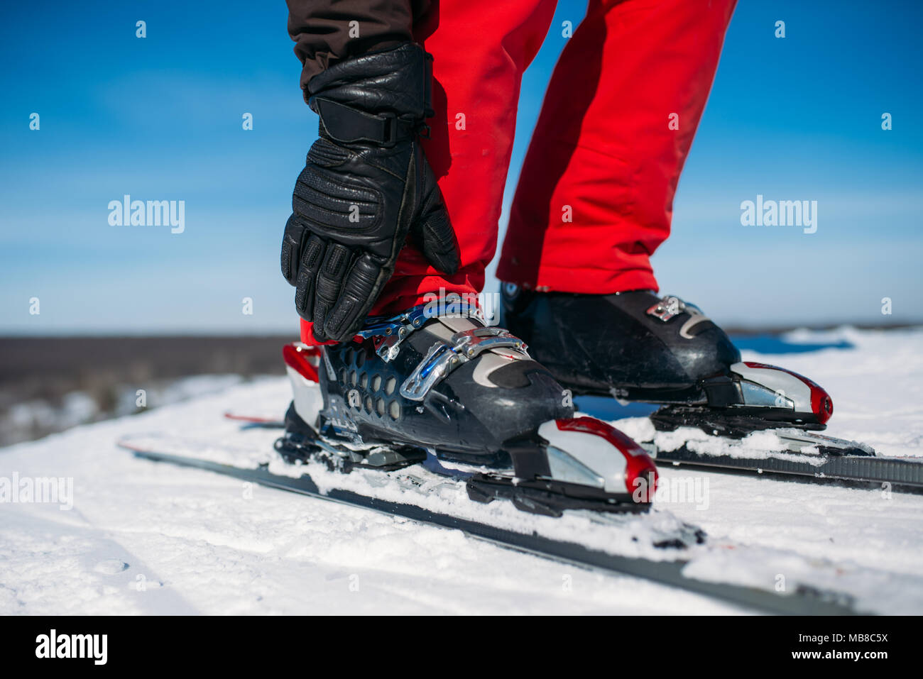 Skier hand fastens the fastening of skis closeup. Winter active sport, extreme lifestyle. Downhill skiing - Stock Image