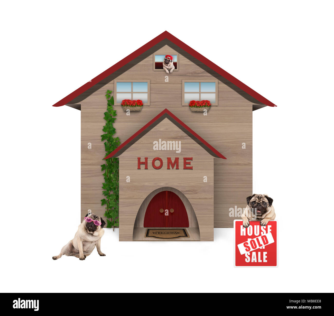 average middle class pug dog familiy, sitting down in garden with house sold sign at new home, isolated on white background Stock Photo