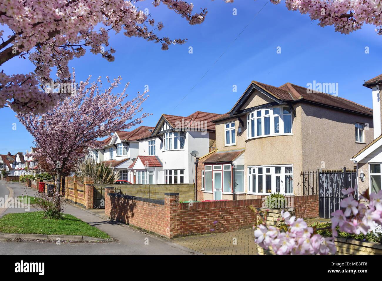 Street scene with semi-detached houses, Cippenham Lane, Slough, Berkshire, England, United Kingdom - Stock Image