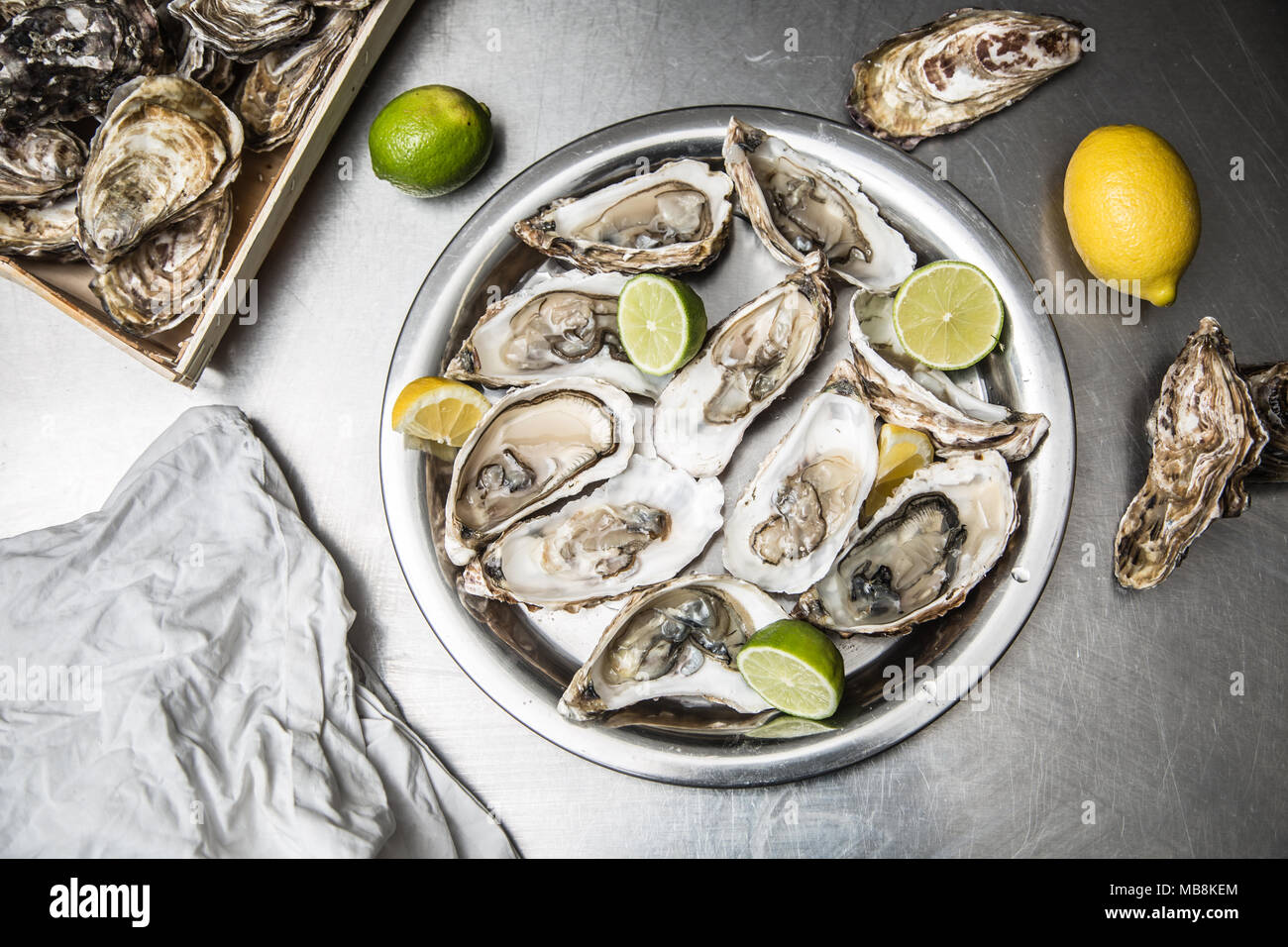 Several open oysters with lemon and lime. Stock Photo