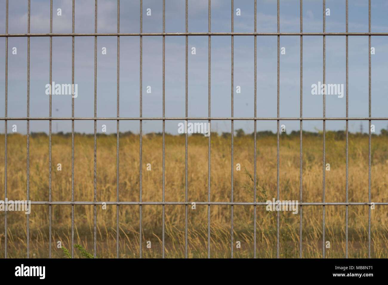 close up picture of cage fence against blue sky Stock Photo
