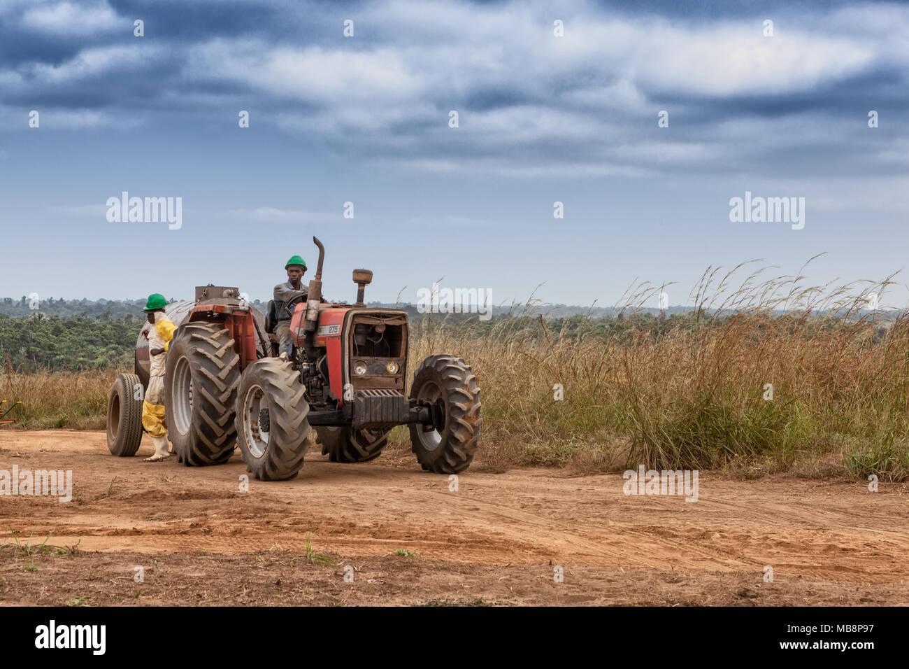CABINDA/ANGOLA - 09JUN2010 - African farmer on tractor to cross plantation of tomatoes. - Stock Image
