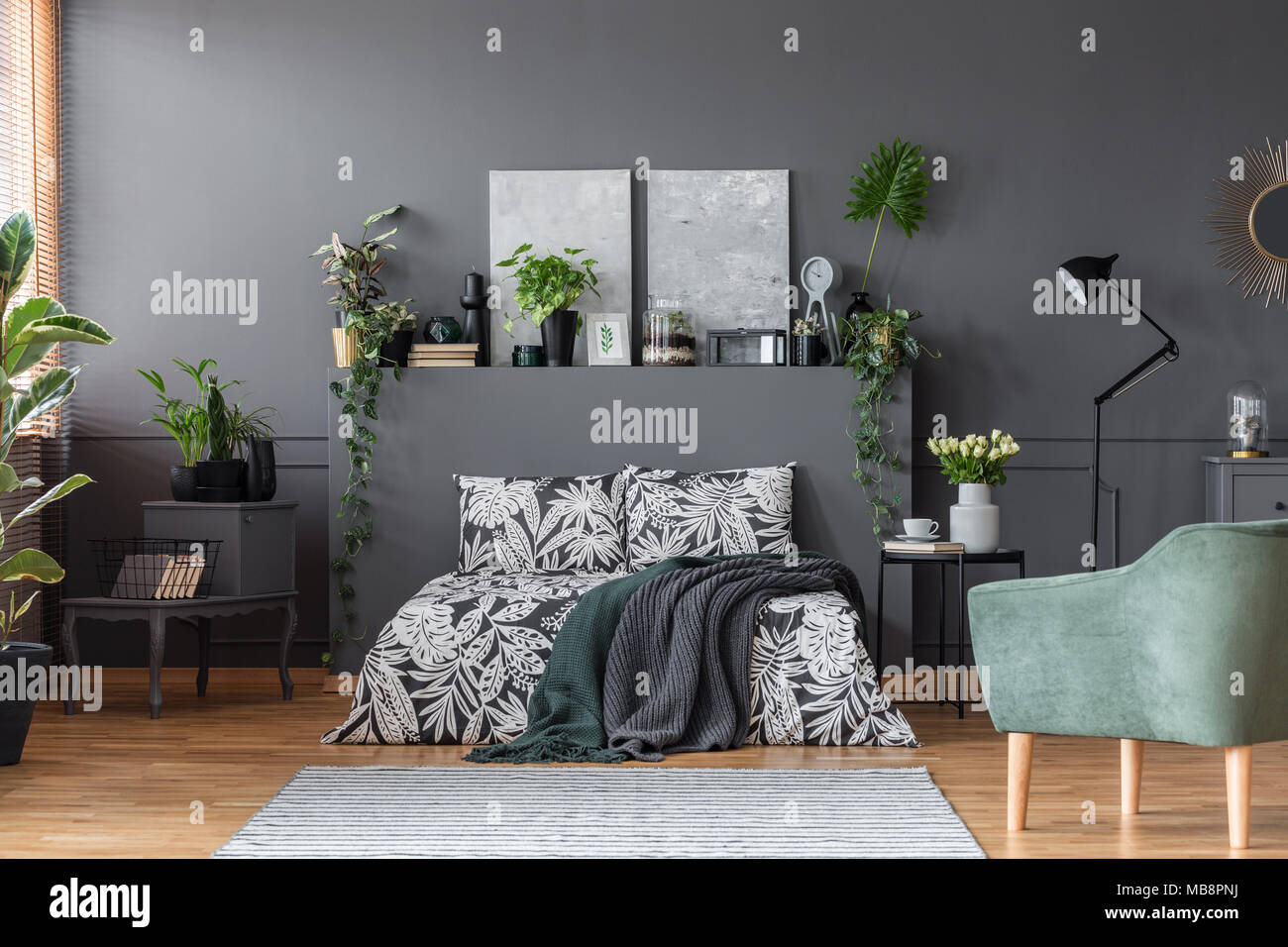 Fresh green plants placed in dark grey bedroom interior with ...