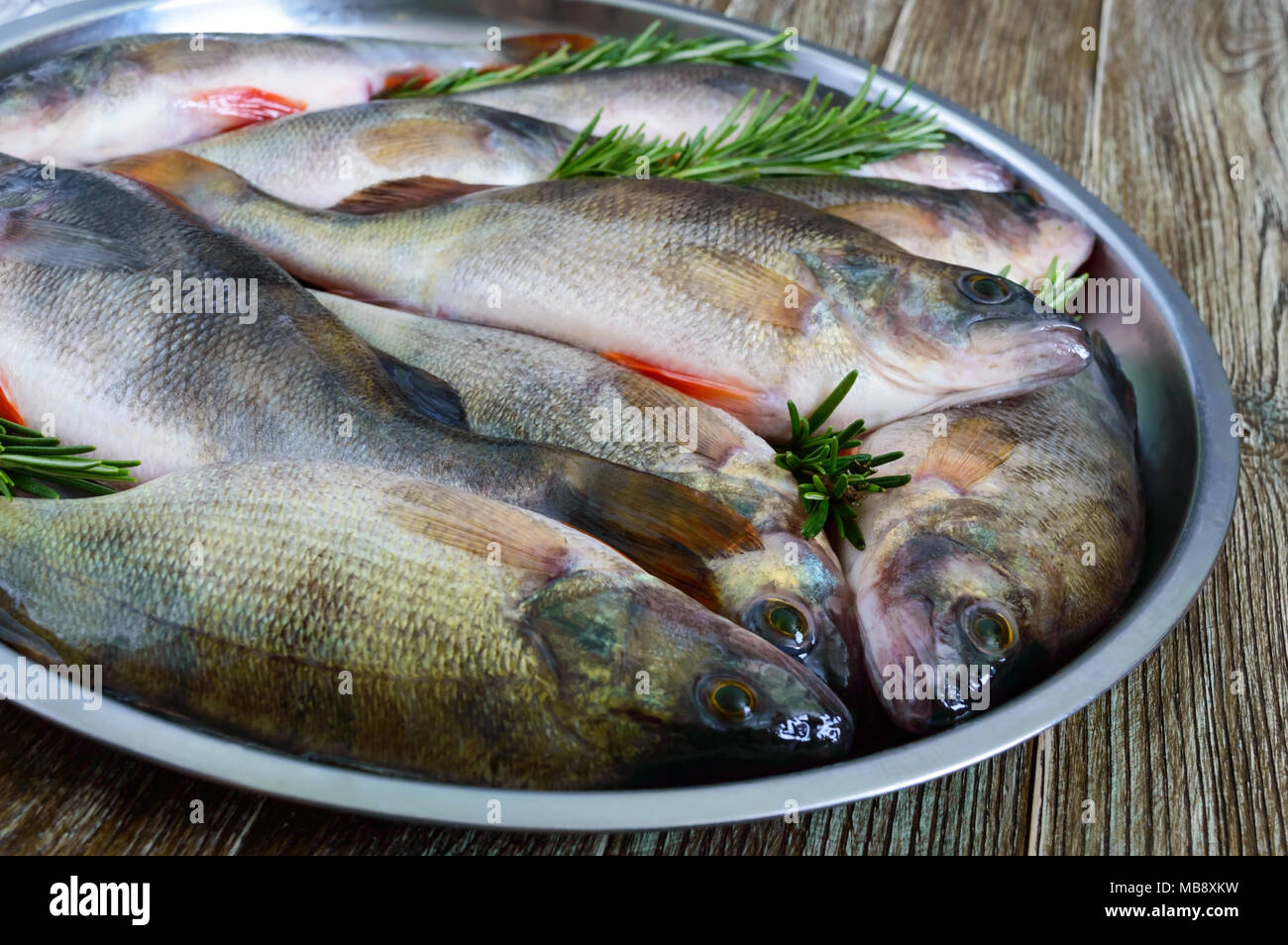 how to catch carp fish