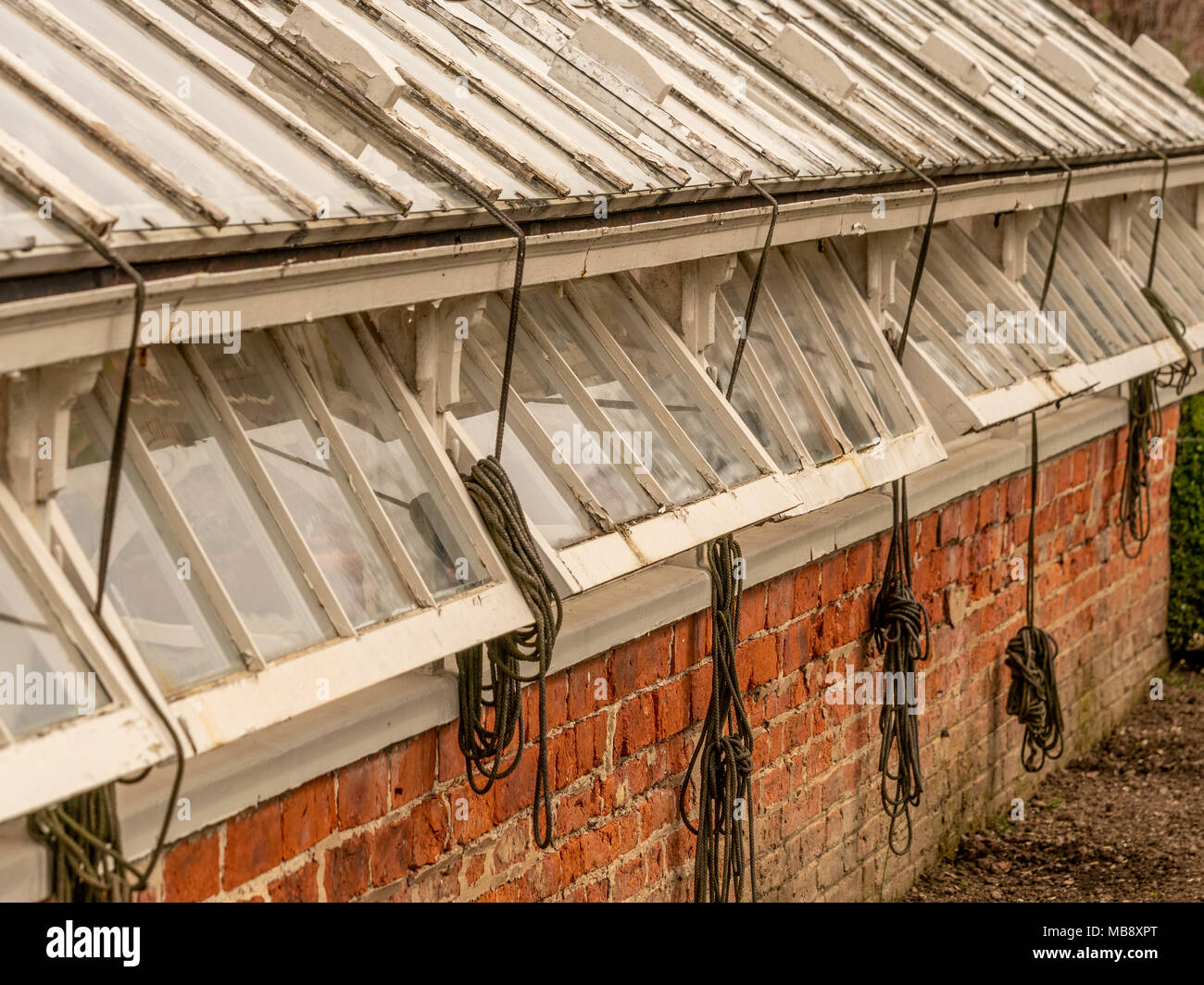Greenhouse window ventilation to avoid overheating of plants - Stock Image