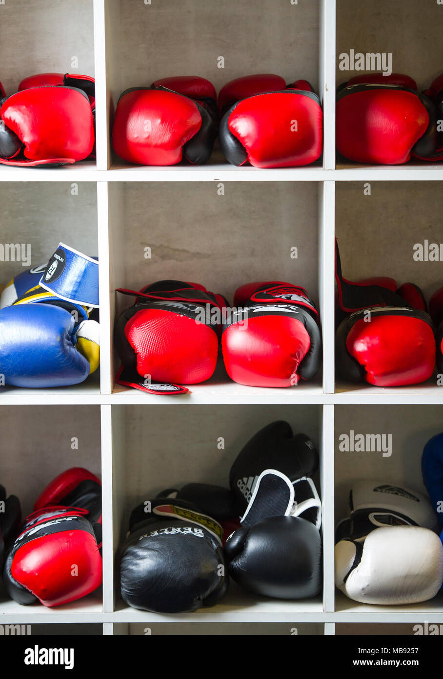 Various colourful boxing gloves stored on shelves in a boxing gymnasium - Stock Image