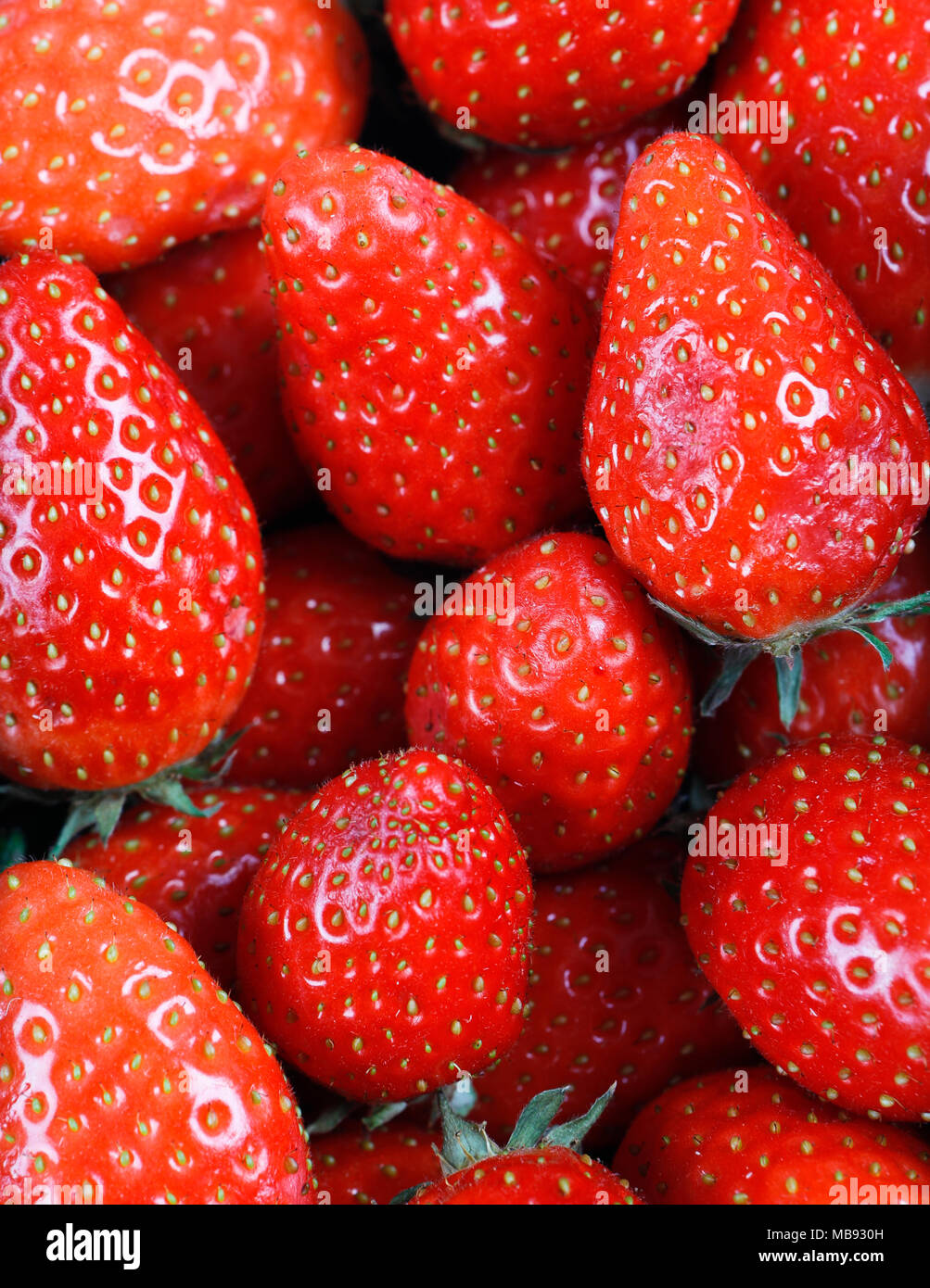 Fresh strawberries - Stock Image