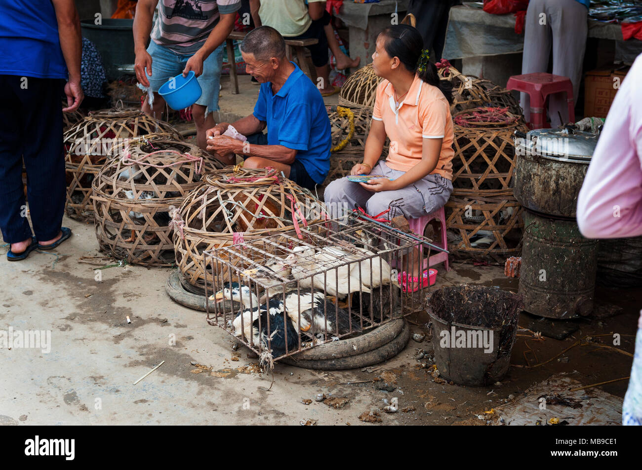 Fuli Village, Yangshuo, Guangxi, China - August 2, 2012: People selling live animals in the market of the Fuli Village in the countryside of southern  - Stock Image