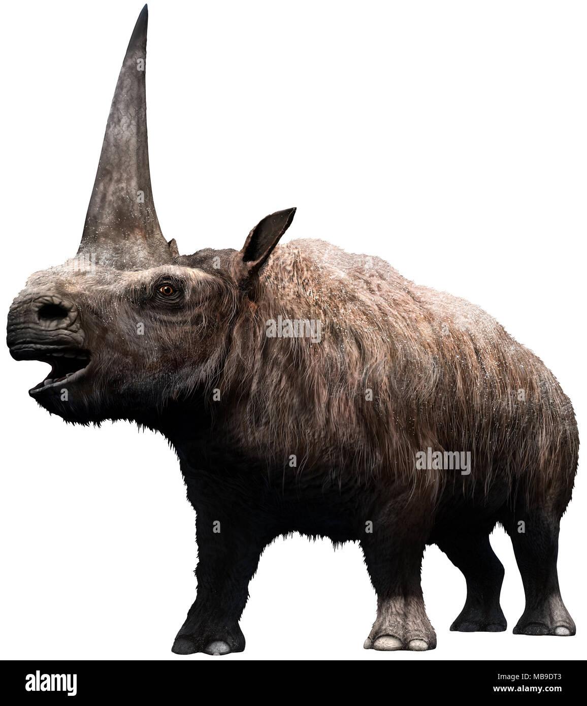 Elasmotherium - Stock Image