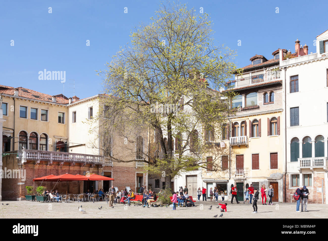 Campo San Polo, San Polo, Venice, Veneto, Italy in spring with locals and their kids enjoying the sunshine and relaxing on benches under trees - Stock Image
