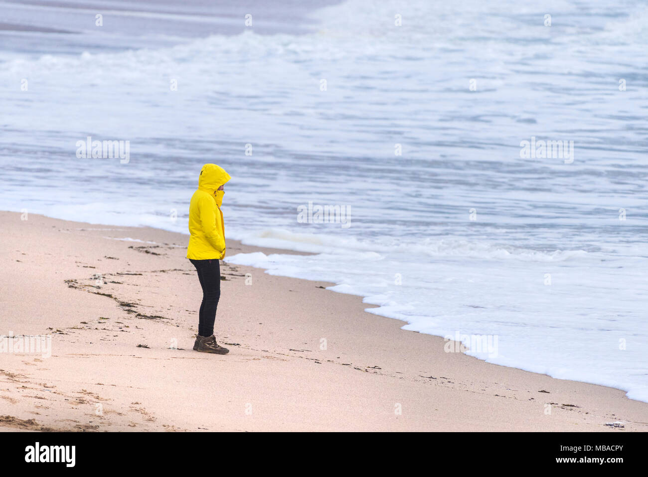UK Weather. A woman wearing a bright yellow jacket braving the chilly weather conditions on the coast at Newquay Cornwall. - Stock Image