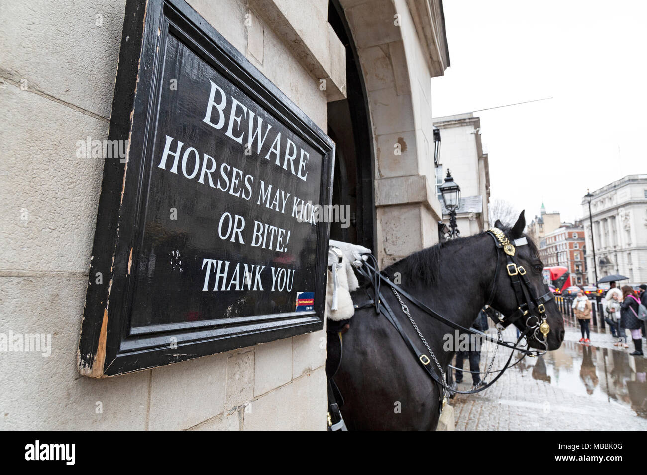 A horse from the Queens Life Guard on Whitehall, London. A sign warning tourists 'Beware horses may kick or bite! Thank you'. - Stock Image