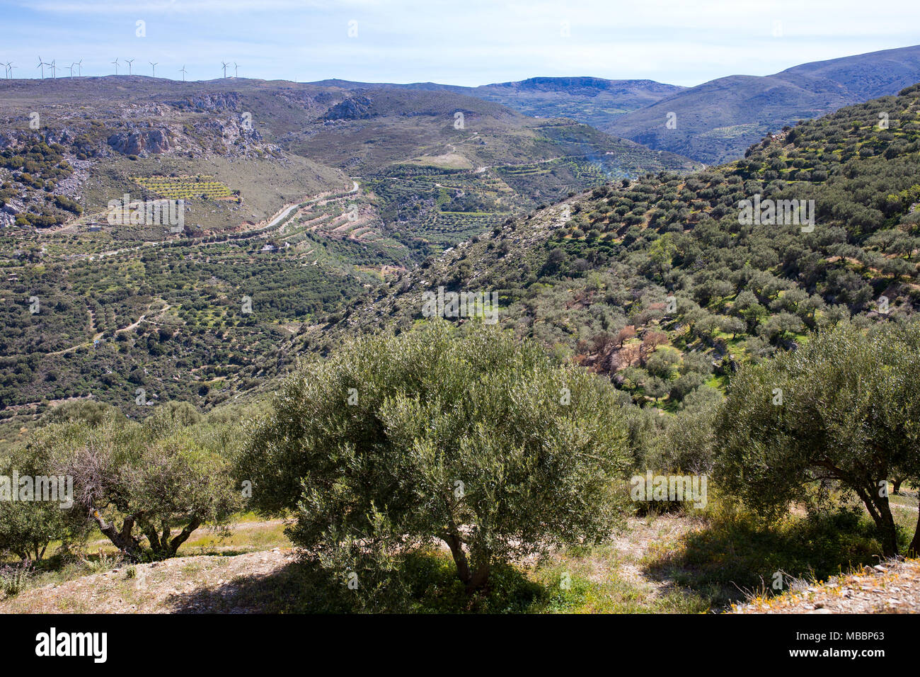 Crete landscape, green hills, mountains, blue sky, olive trees and brush. Scenic, panoramic, large brochure photo. - Stock Image