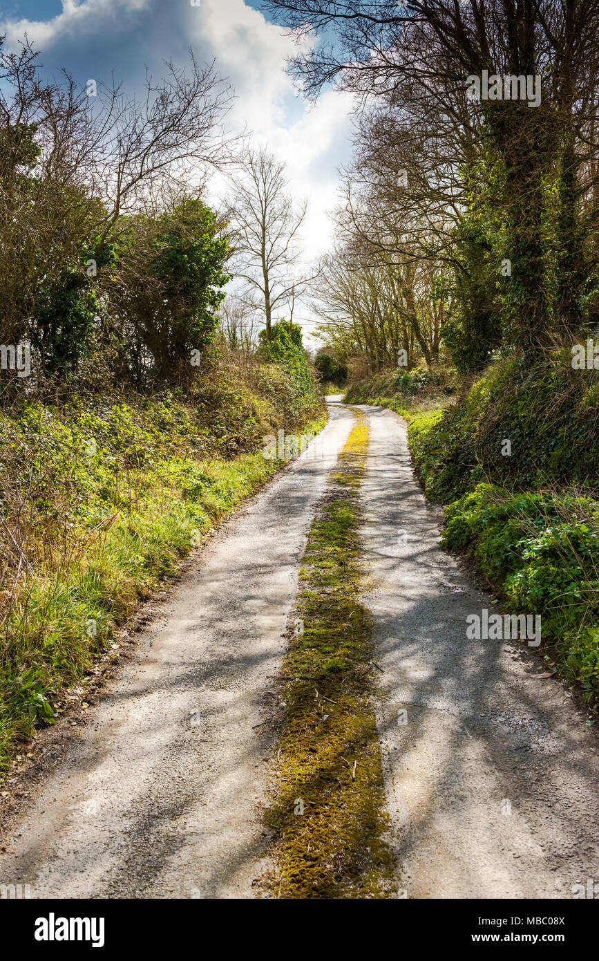 A quiet country lane in Newquay Cornwall. - Stock Image
