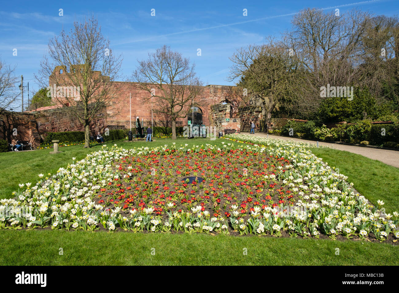 Primulas flowering in colourful flowerbeds in Castle gardens in ...