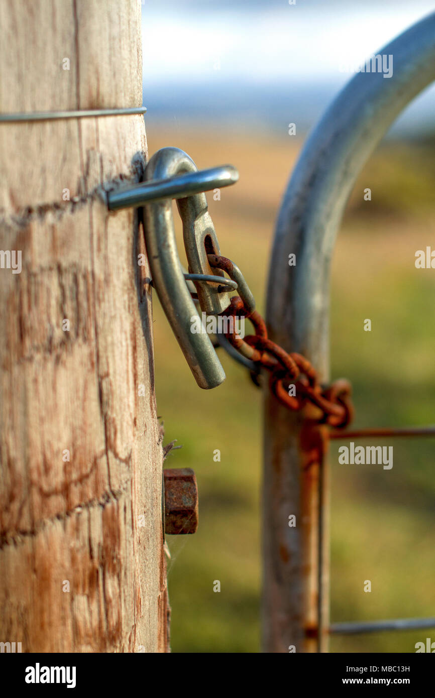 A rusty cattle lock fence at the cattle farm Stock Photo: 179129205 ...