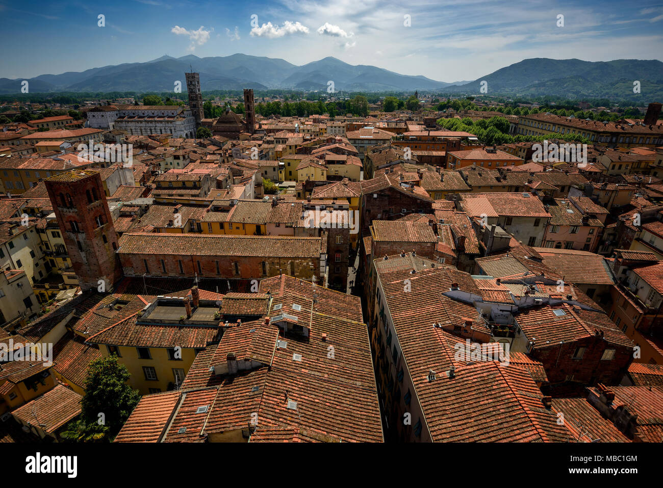 Amazing scenic view of Lucca and Duomo di San Martino from Torre dell Orologio, Lucca, Italy. Stock Photo
